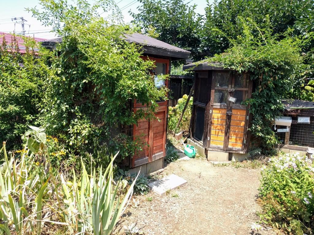 ミツバチガーデンカフェのお庭05