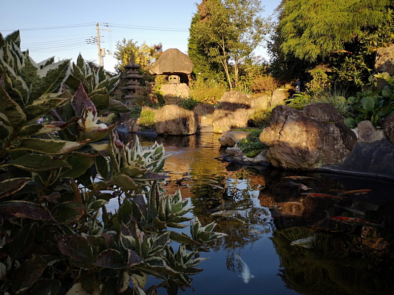 庭園喫茶 錦の池